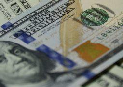 Відновлення кредитування бізнесу — Кредитний реєстр, відповідальність поручителів, змінювана процентна ставка, спадкування боргових зобов'язань